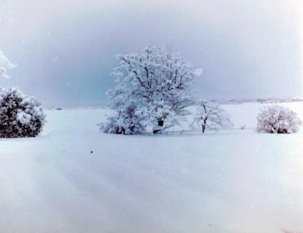 雪140218