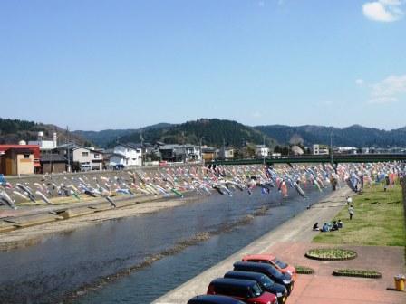 加茂川鯉のぼり140412