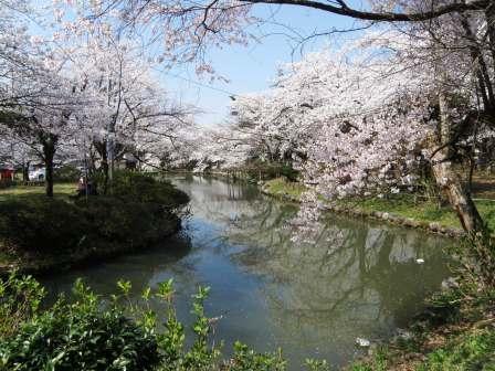 村松公園140412