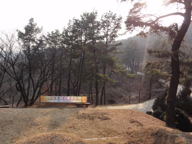 2014年2月22日 浅川巧の墓 5