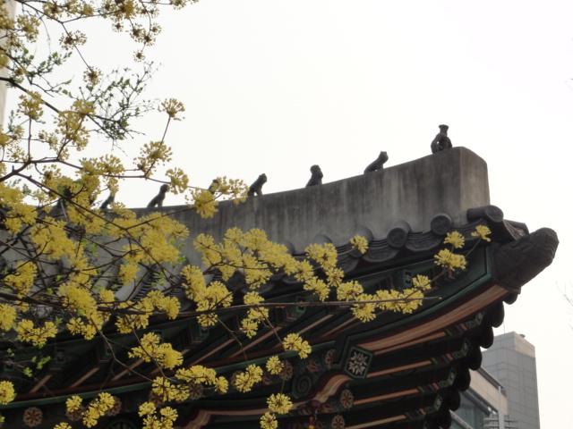 2014年3月27日 徳寿宮 雑像と花