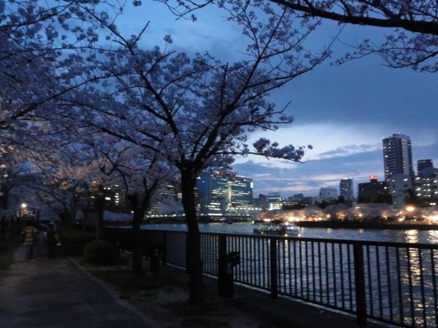 2014年4月2日 桜之宮公園2