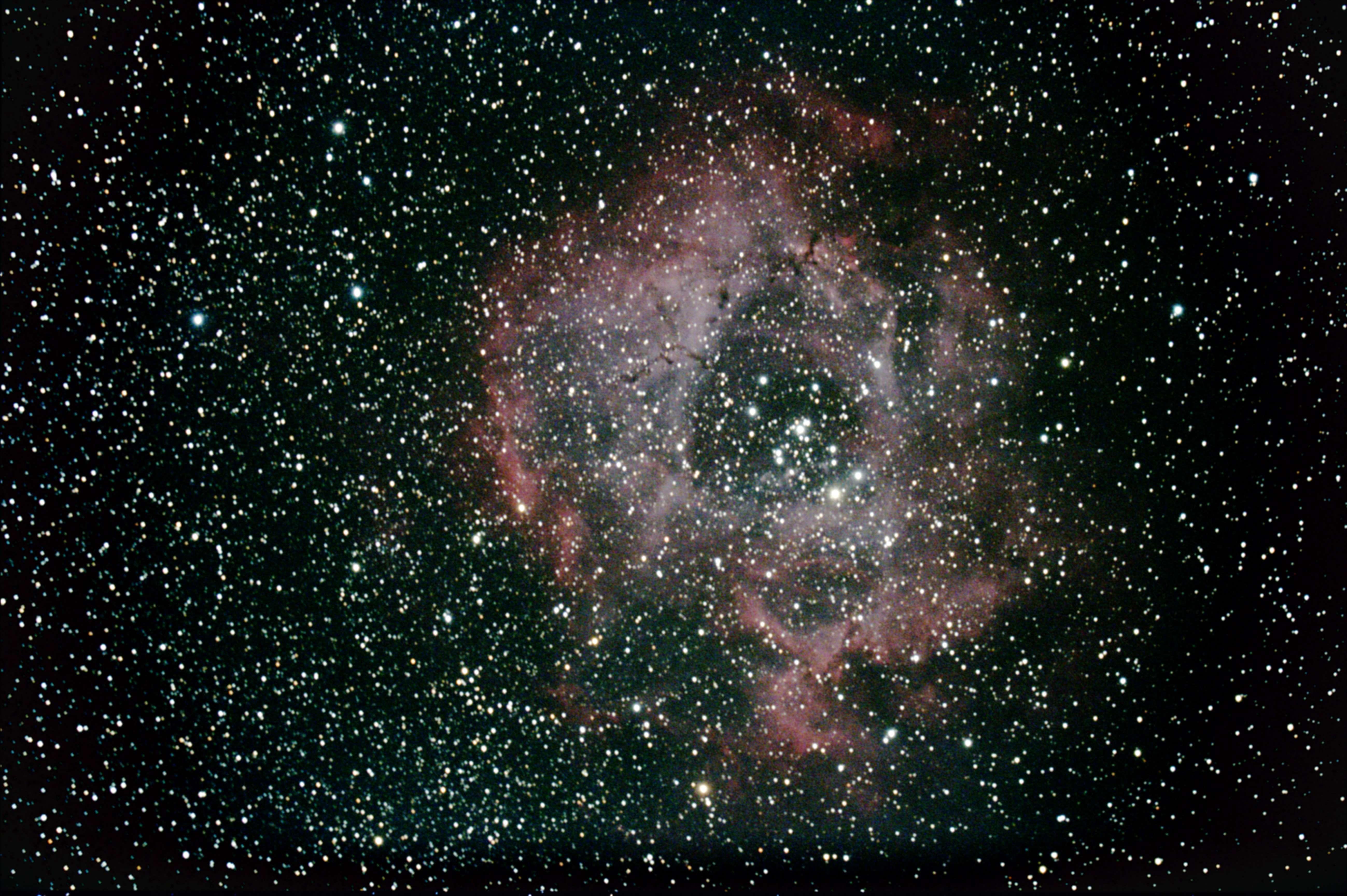 バラ星雲 NGC2237-9