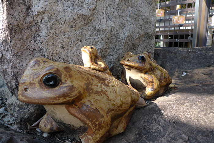 田村神社  讃岐国一宮  34