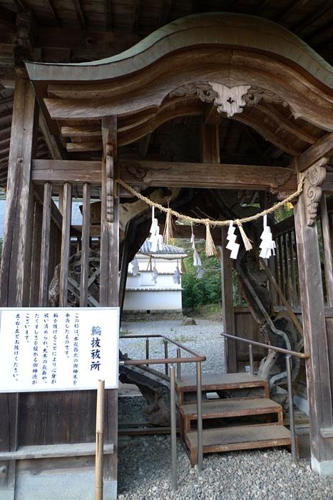 土佐神社  高知県  19