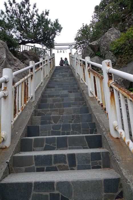 桂浜 2  海神神社 4
