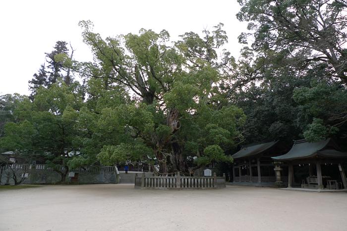 大山祇神社   愛媛県  6