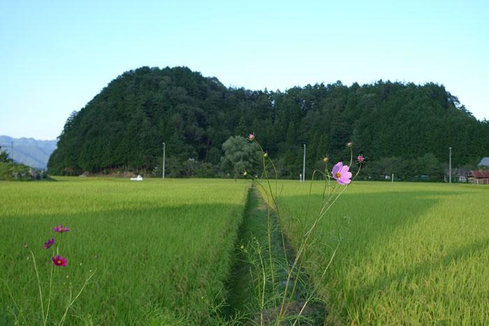 2014 ひだ高山 初秋 1