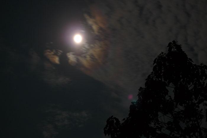中秋の名月 と 十五夜 2014 2