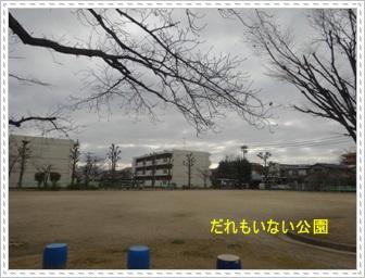 DSC05191_20140220014309be7.jpg