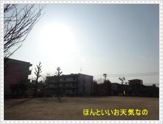 DSC05236_20140221010018be4.jpg