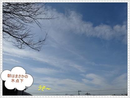 DSC05774.jpg
