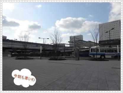 DSC05869.jpg