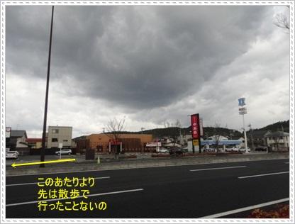 DSC07096.jpg