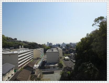 DSC07429.jpg