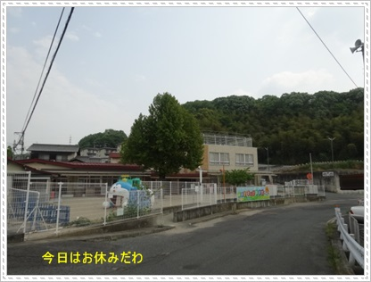 DSC08070.jpg