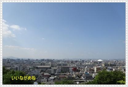 DSC08782.jpg