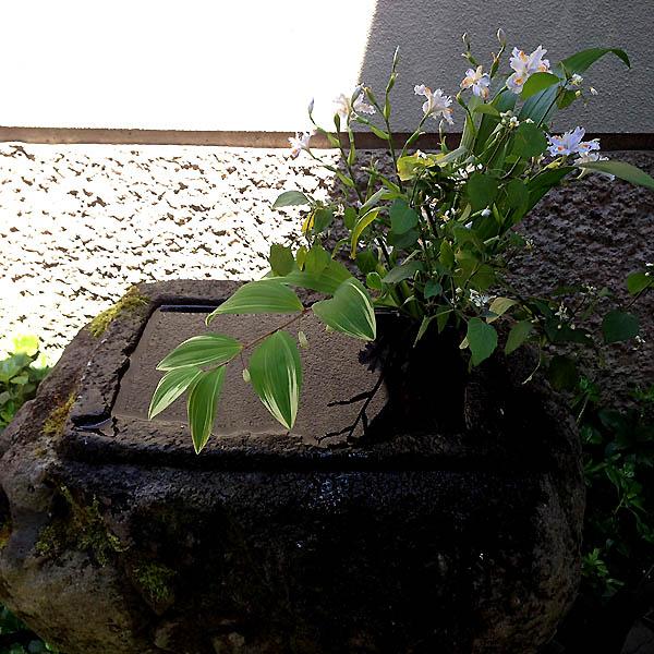 raku_bijutsukan_1.jpg