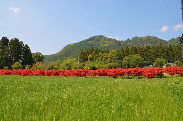 古賀志山3