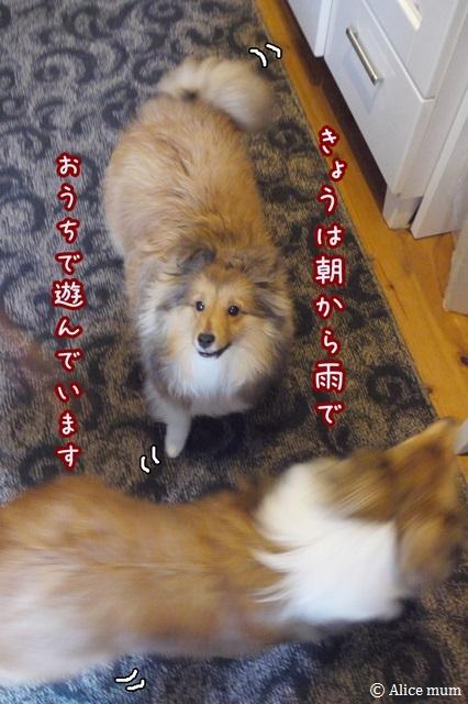 1mini_20140320235043b25.jpg