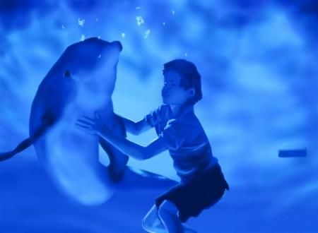 春のファミリー企画&「イルカと少年(2011)」