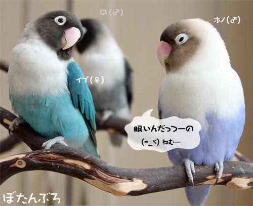 20140707_03.jpg