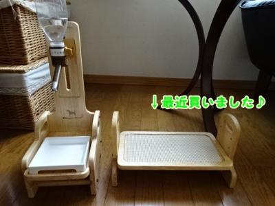 水と食事台