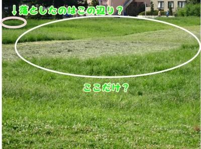 81DSC00213見つけた広場