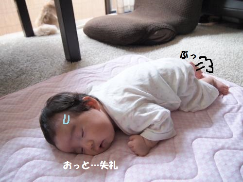 010_convert_20140702115558.jpg