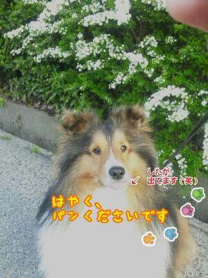 fc2_2014-04-01_08-04-56-317.jpg
