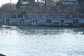 見沼台用水路導水口201311④