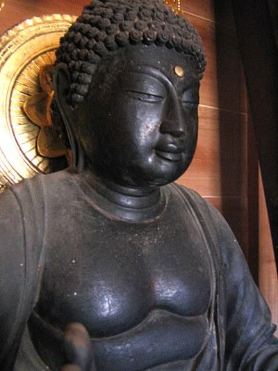 和束町薬師寺・薬師如来像の胸、腹の柔らかな肉身表現