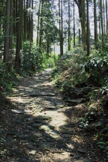 旧東海道:畑宿付近の石畳