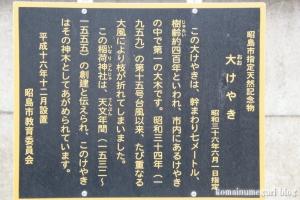 稲荷神社(昭島市郷地町)16