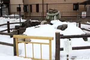 神明神社(昭島市拝島町)16