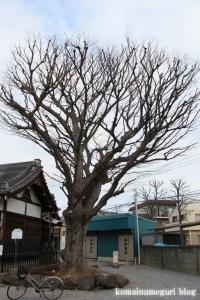 日枝神社(江戸川区谷河内)8