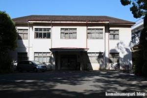 氷川神社(さいたま市大宮区高鼻町)69