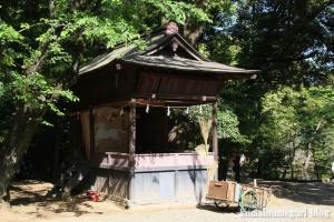 氷川神社(さいたま市大宮区高鼻町)68