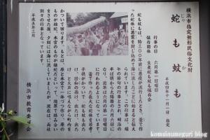 神明宮(横浜市鶴見区生麦)2