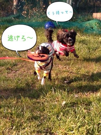 fc2blog_2014031607523532d.jpg