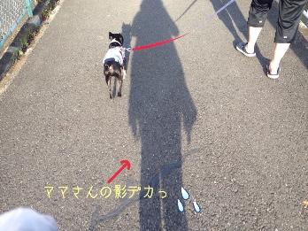 fc2blog_20140518212805146.jpg