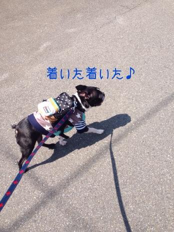 fc2blog_20140620065637110.jpg