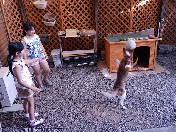 翔ちゃん大喜び2