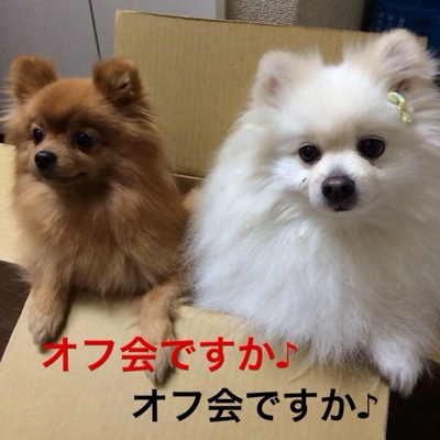 fc2blog_20140224195747c89.jpg