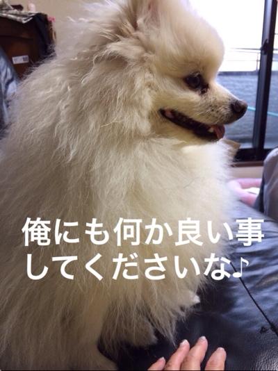 fc2blog_20140226202824416.jpg