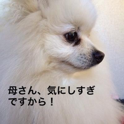 fc2blog_20140227215001ef7.jpg