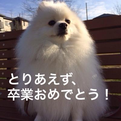 fc2blog_201403062022248e5.jpg
