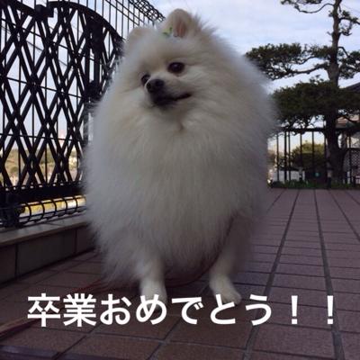 fc2blog_20140307122129d83.jpg