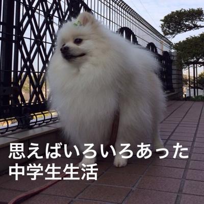 fc2blog_20140307122212d00.jpg