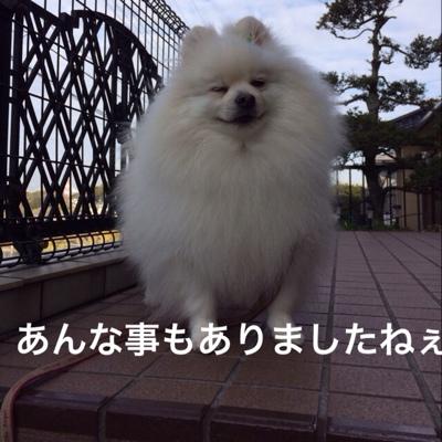 fc2blog_201403071223096b3.jpg